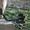 сдам в аренду металлоискатель с разделителем металлов #1689418