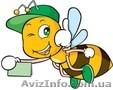 Продам мед и другие продукты пчеловодства со своей пасеки,  Полтавская обл.