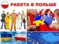Требуются работники на куриный завод в Польшу