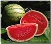 Продам свежие овощи и фрукты